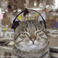 cat_with_headphones_MOVING_FILE_thumb_200x200.png