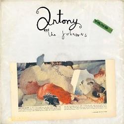 Antony and the Johnsons' Swanlights