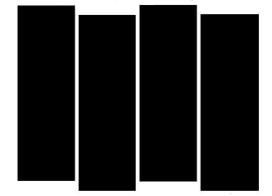 Black Flag's iconic logo.