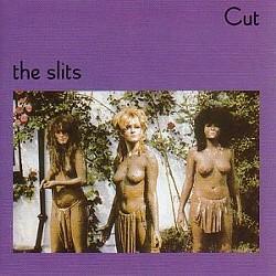 slits_cut_cover.jpg