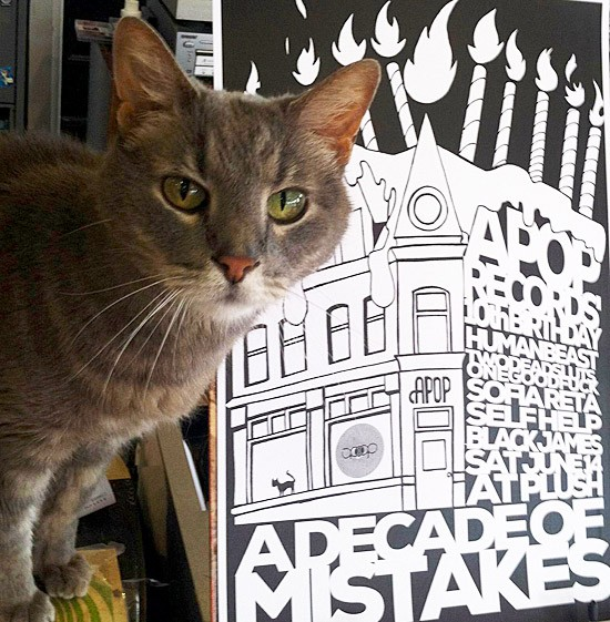 Store cat Beryl Apopkitty poses beside the poster for this weekend's show. - TIFFANY MINX