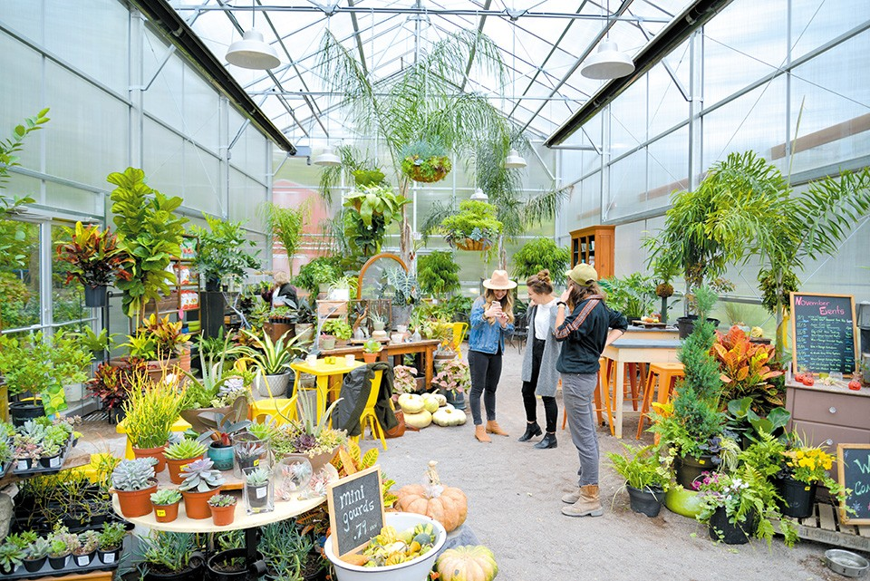 """""""We wanted to create a space where people connect to nature,"""" says Tammy Behm of Maypop Coffee and Garden Shop. - TOM HELLAUER"""