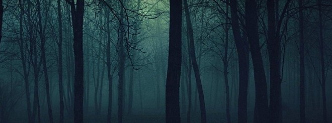 Enter the Evil Forest in Godfrey, Illinois.... but don't say we didn't warn you.