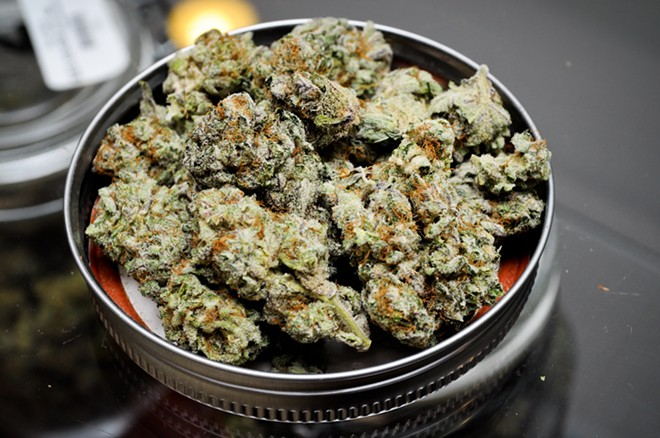 A pile of high-grade marijuana, of which Cool Guy Luke is apparently a fan. - FLICKR/DANK DEPOT
