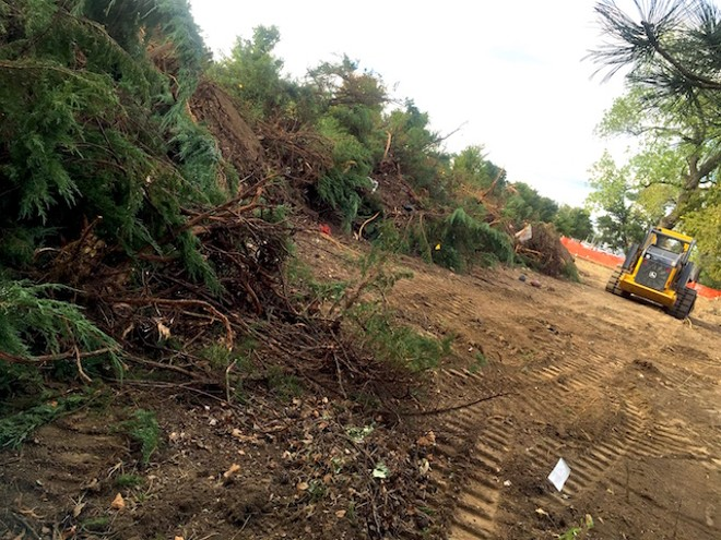 The scene on Thursday: The Roberts' bushes were uprooted and left in huge piles. - PHOTO COURTESY OF STEPHANIE ROBERTS