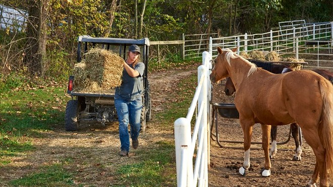 Adoptions have continued at Longmeadow Rescue Ranch, including a curbside option. - THE HUMANE SOCIETY OF MISSOURI