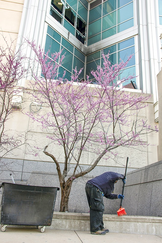 A city worker sweeps up glass from the sidewalk beneath the city Justice Center. - DANNY WICENTOWSKI