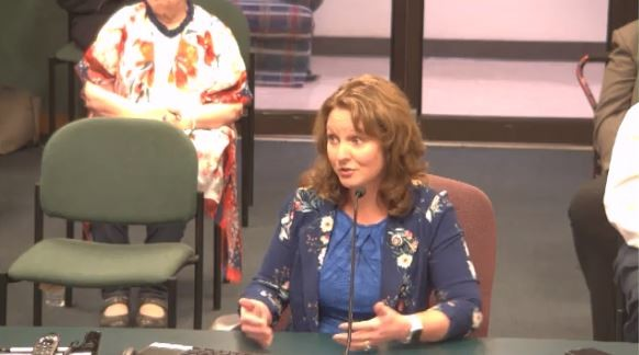 Rep. Ann Kelley goes full Mike Lindell during an August 24 meeting of the Missouri House Elections Committee. - SCREENSHOT
