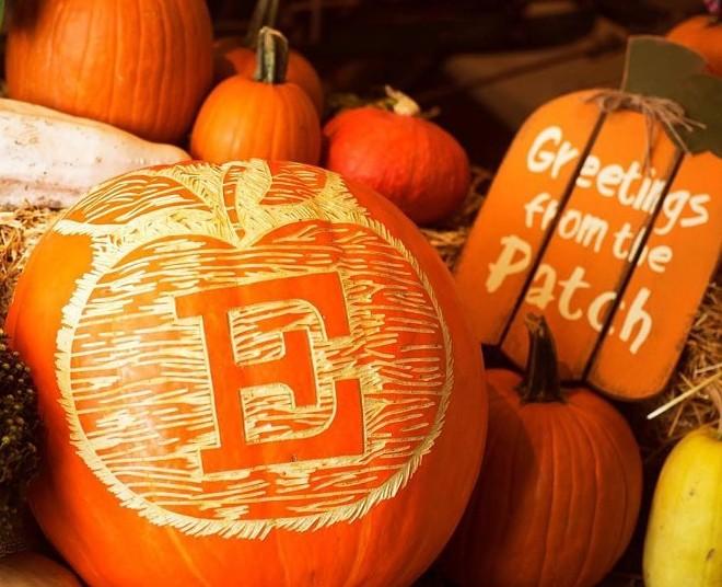Happy fall, y'all. - COURTESY ECKERT'S FARMS