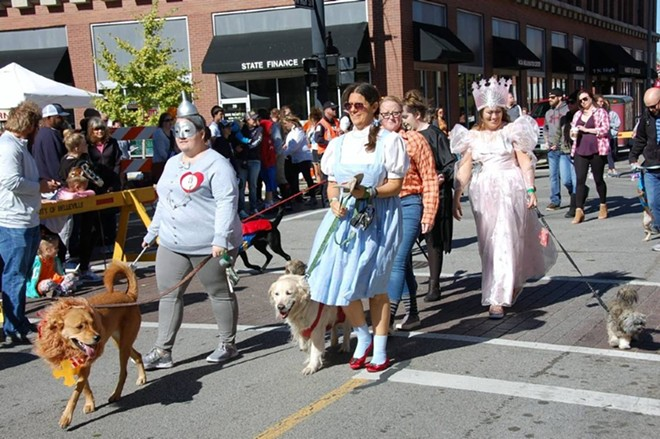March your pets through the streets of Belleville in their finest costumes. - COURTESY BELLEVILLE AREA HUMANE SOCIETY