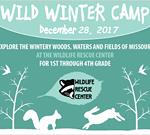 Wild Winter Camp