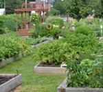Demonstration Garden Tour