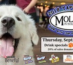 Yappy Hour Social September