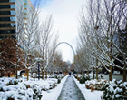 St. Louis, You Look Great When You're Snowy
