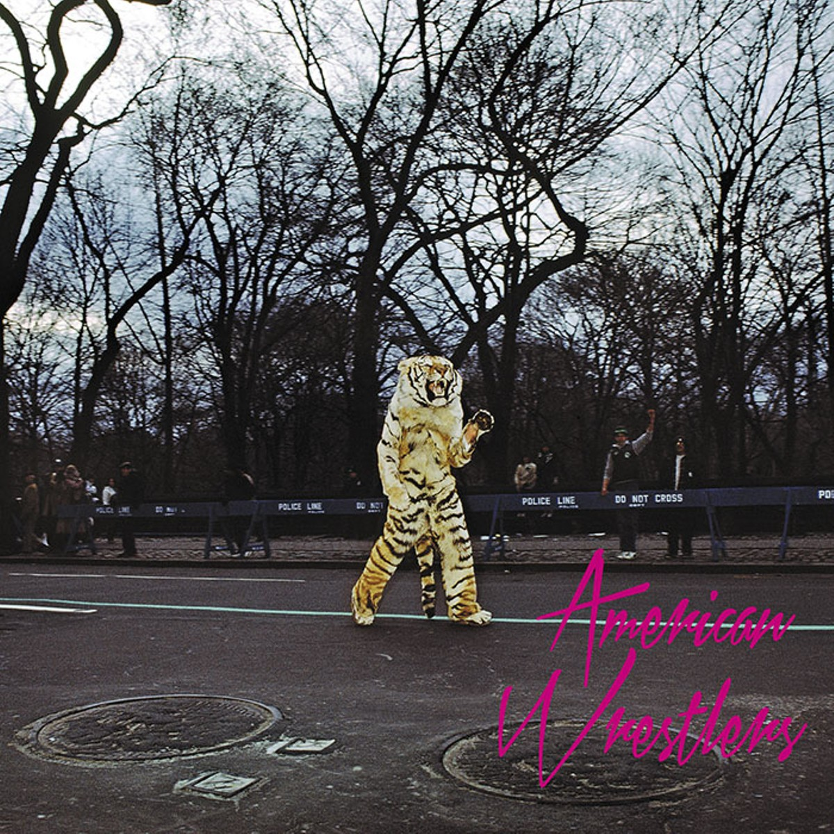 American Wrestlers' excellent self-titled album.