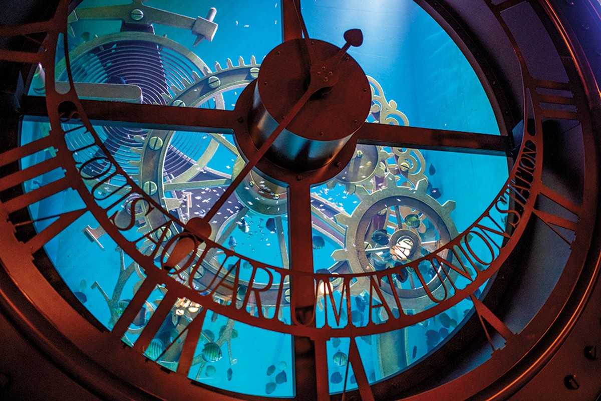 There's plenty to spark the imagination at the St. Louis Aquarium at Union Station.