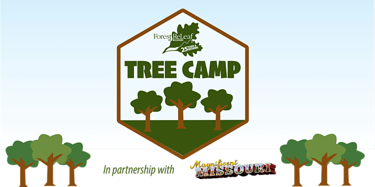 tree_camp.png