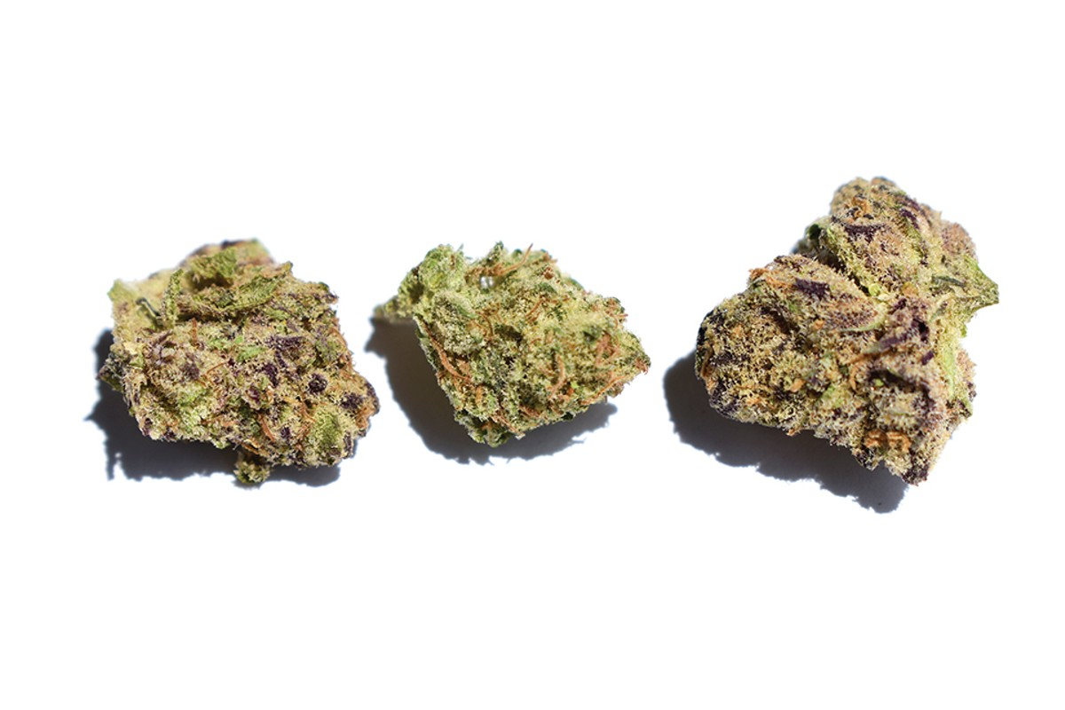 Tommy's sampling of Lava Cake came absolutely encrusted with orange and white hairs and a generous dusting of trichomes, and it was one of his favorites strains so far.