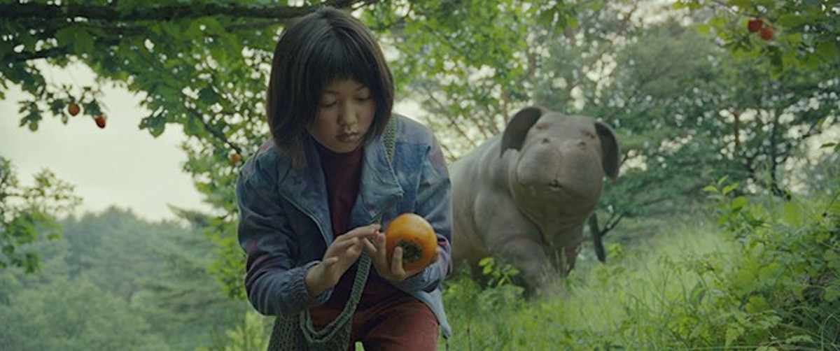 Mija (Ahn Seo-hyun) and Okja enjoy a pastoral existence in the mountains of Korea.