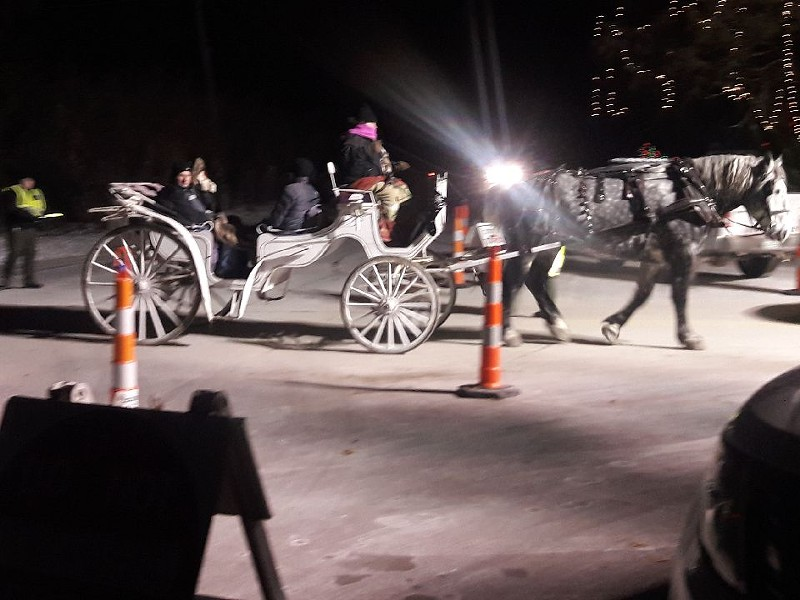 A horse carriage in Tilles Park operated last night in frigid conditions. - PHOTO COURTESY OF DAN KOLDE