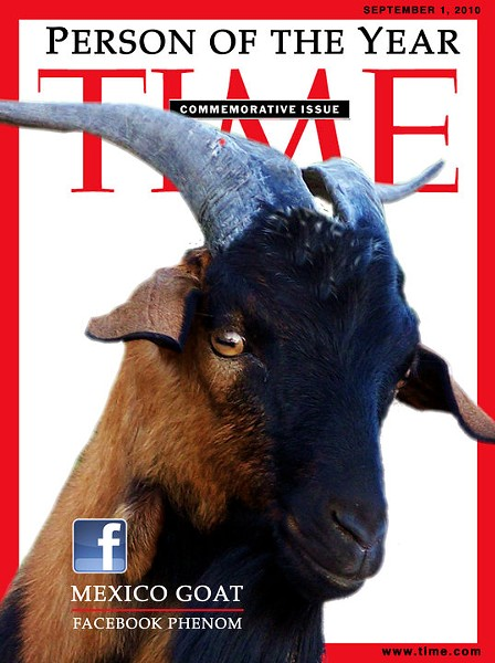 The Mexico Goat: Eat this, Franzen. - IMAGE VIA
