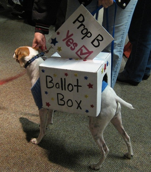 Whose identity did you steal to cast that vote, doggy? - KASE WICKMAN