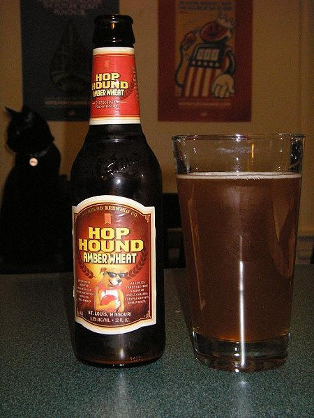 Still Life with Hop Hound and Black Cat - IAN FROEB