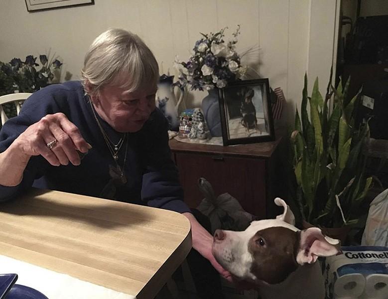 Dexter, Mandi Kay Sullivan's dog, now lives with her grandmother. - COURTESY OF MANDI KAY SULLIVAN