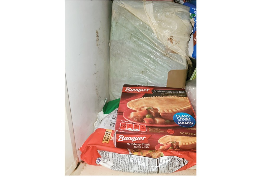 Barbara Smith kept the strange box in the back of her freezer for decades. - ADAM SMITH