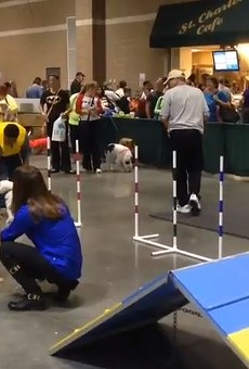 The St. Charles Convention Center has hosted the St. Louis Pet Expo every year since 2009. That streak ends this year.