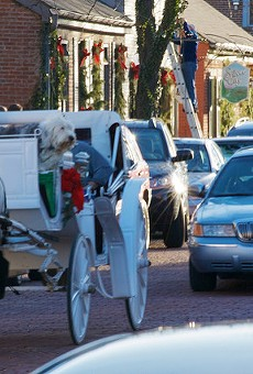 Carriage horses, like the one shown above, are a common sight in St. Charles.