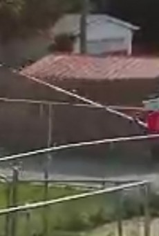 Video Shows St. Louis Legend Pole Vaulting in South City Alley