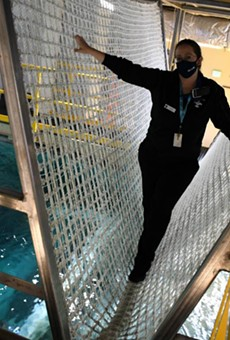 A new rope bridge stretches across Shark Canyon at the St. Louis Aquarium.