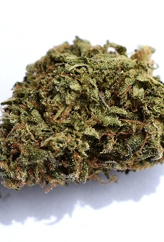 """Proper Cannabis' """"Alien Rock Candy"""" is the brand's calling card — and with good reason."""