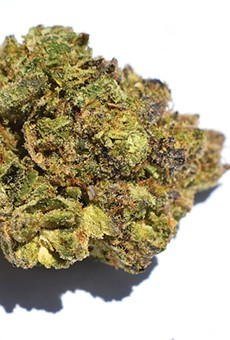 The Flora Farms-brand Gorilla Glue (a.k.a. GG4) stocked by N'Bliss packs a wallop and is great for pain.