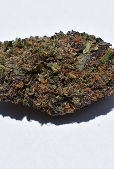 Heya's Runtz strain came primarily in the form of one enormous bud that comprised most of the eighth we purchased.
