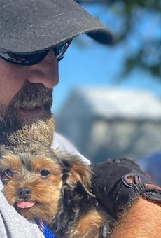 Humane Society of Missouri Rescues Nearly 100 Dogs, Needs St. Louis' Support