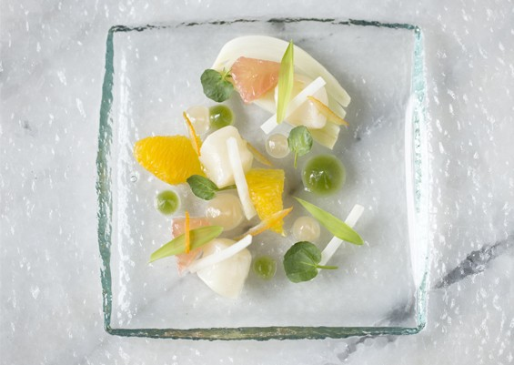 The minimalist bay scallop crudo from Elaia's tasting menu. Slideshow: Photos from Inside Elaia and Olio