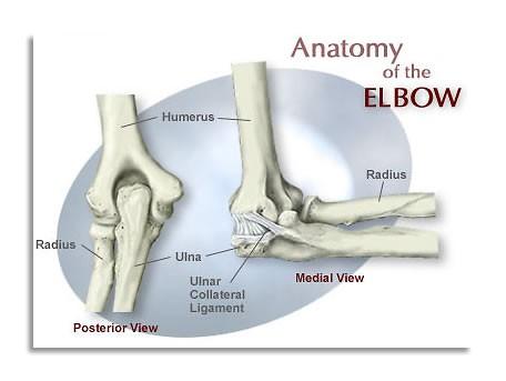 elbow.jpg