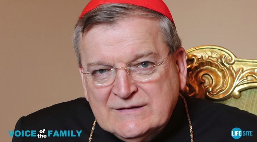 "Cardinal Raymond Burke says being gay is ""intrinsically disordered."" - VIA YOUTUBE"