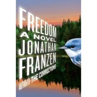 freedom_by_franzen.jpg