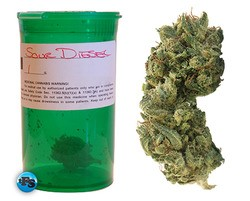 Group wants state senators to support Sour Diesel - IMAGE VIA