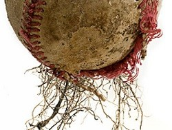 Ballpark scraps find a second life as lawn food. Who knew? - PHOTO: JENNIFER SILVERBERG