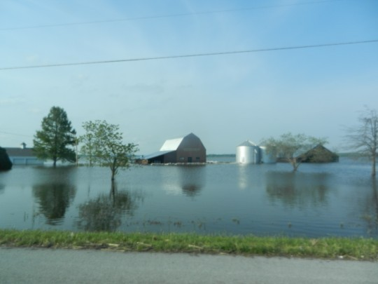 It's not just farms on the Missouri side that have flooded -- this farm is a few miles outside of Cairo, Illinois.