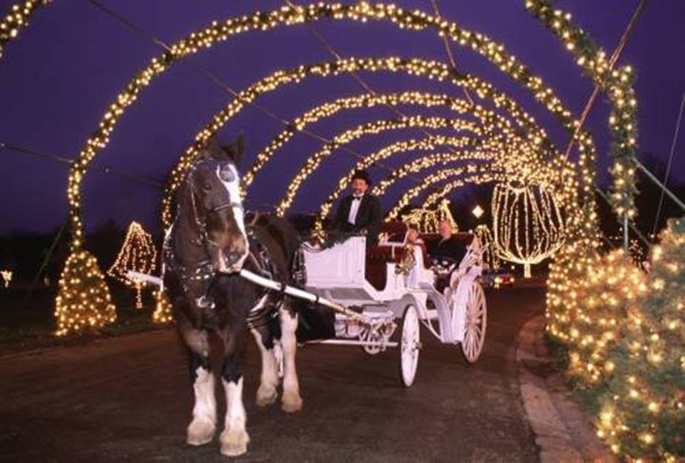 ST. LOUIS COUNTY PARKS VIA FACEBOOK - RIP King The Clydesdale: Tilles Park Winter Wonderland Carriage