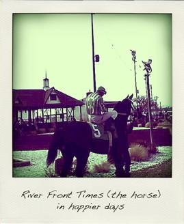 RFT_Horse_polar.jpg