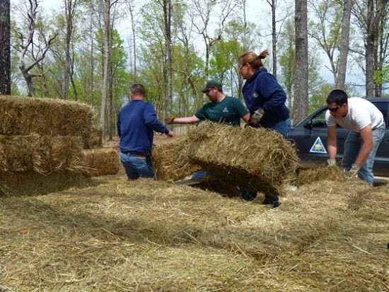 Department of Conservation workers unload hay bales to feed the elk while they live in the holding pen. - AIMEE LEVITT