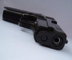firearm_1_thumb_250x210.jpeg