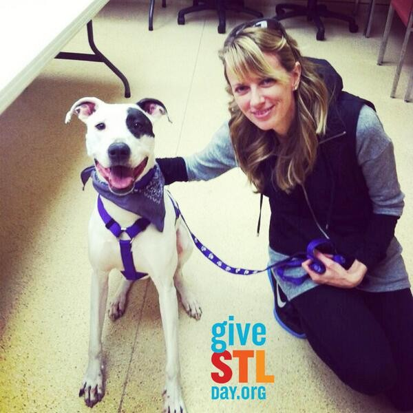 The Animal Protective Association says it will use donations from Give STL Day to help dogs like Gia here find forever homes. - APA OF MISSOURI