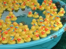 Will there be rubber duckies at the Klan picnic? You bet!